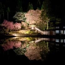◆【宮谷の桜】古民家と桜のコントラストが美しい