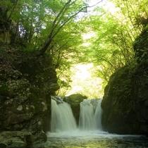 ◆【新緑の三ツ滝】新緑の滝めぐり