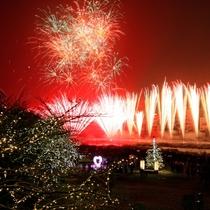 ◆【下呂温泉花火ミュージカル冬公演】ワイドに広がる花火を間近で見ることができる