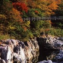 ◆【中山七里の紅葉】美しい景色を見ながらのドライブ