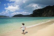 せっかくの西表島、自由気ままに・・・