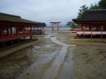 宮島・神社と鳥居