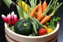 食材一例 <野菜>
