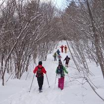 【クロスカントリーコース】新雪の雪山へ