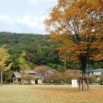 秋の公園広場