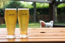 テラスで生ビールを飲みながらわんこがドッグランで楽しむ姿をご覧ください!