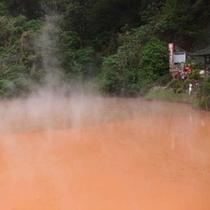 【周辺施設/観光】地獄めぐり…血の池地獄