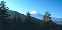 不動湯付近の富士山