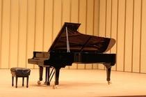 ピアノ スタインウェイ2