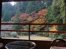 客室からの風景(秋)2