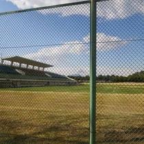 *サッカー・ラグビー場