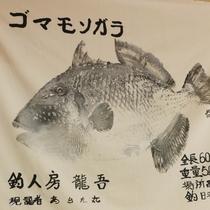 【魚拓】社長が釣り上げた<ゴマモンガラ>