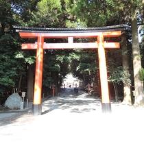 *【霧島神宮】朱塗りの鳥居をくぐり参道の先に社殿がございます。