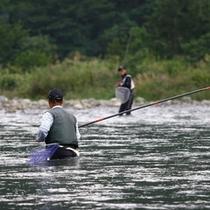 【周辺観光】 イメージ 藁科川で名人が釣る天然鮎