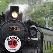 【周辺観光】 イメージ 大井川鉄道のSL
