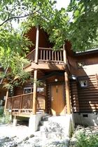 森緑に囲まれたコテージ外観 ドアを開ければログハウスの香りに包まれ、家の中でも森林浴