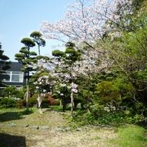 白柳荘庭園[春]