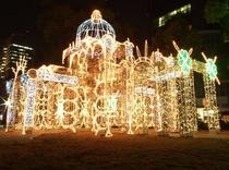 【ひろしまドリミネーション】毎年11月中旬〜1月初旬に平和大通りで開催されます♪