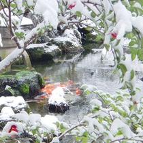 *【庭園(冬)】(一例)