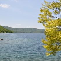 *【十和田湖】美しい湖がすぐそばに…散策はいかがですか?