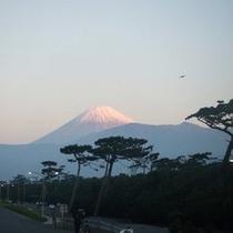 【千本浜】千本浜から見る富士山
