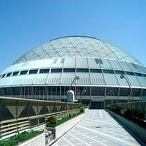 【ナゴヤドーム】プロ野球中日ドラゴンズの本拠地。ライブやイベントでも使用されます。