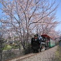 【碧南明石公園】車で20分。ゴーカート、おとぎ列車など家族で楽しめます。