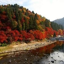 【香嵐渓】車で約50分(有料道路利用)秋の紅葉は必見です。