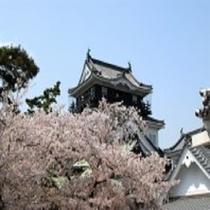 【岡崎城】ホテルから車で約45分。岡崎城や三河武士のやかた家康館を中心とした歴史と文化の公園です。
