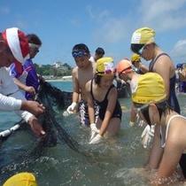 きれいなビーチで魚のつかみ取り無料体験!
