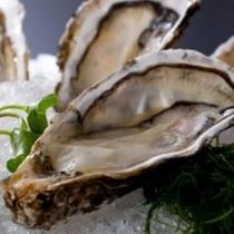 栄養満点の志摩産牡蠣
