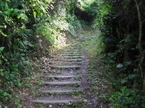 木漏れ日の階段