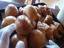 朝食 焼き立てパン