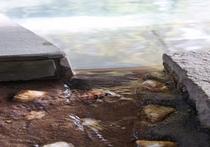 ひたひたと溢れ出る天然硫黄泉。