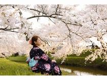 4月上旬 は桜見学
