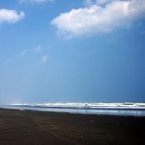 *白里海岸