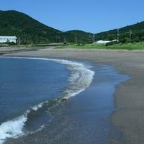 対岸の浜辺…ホテルから歩いて10分ほどのところに浜辺あり!お散歩も気持ちがいいですよ♪