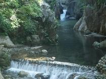夏の鈍川渓谷