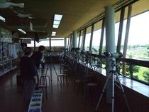 湖北野鳥センター内展望フロア