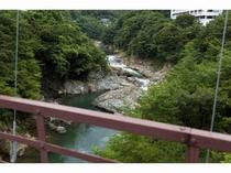 滝見橋から鬼怒川