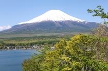 2013年5月 テラスからの富士山