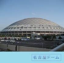 ナゴヤドーム(電車約55分)