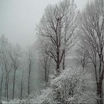 お食事処からの眺め 冬