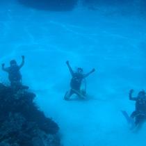 *【ダイビングイメージ】魅力いっぱい♪美しい海の中へようこそ!