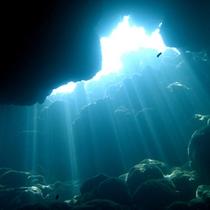 *【ダイビングイメージ】海の中ではこんなに神秘的な光景もお楽しみ頂けます。