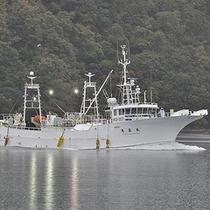香住は「 柴山港 」と「 香住港 」の二大漁港に「 カニ 」をはじめ旬の魚介が水揚げされます