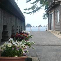 「 ふじや 」の位置する佐津地区は「 美しい海岸 」と「 季節ごとのお花たち 」が特長です