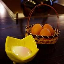 ますだや自慢の温泉卵