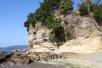 世界ジオパークの龍石海岸