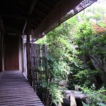 【お庭】古い和風建築ならではのぬくもりを感じていただけます。